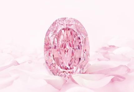 Sothebys-spirit-of-the-rose